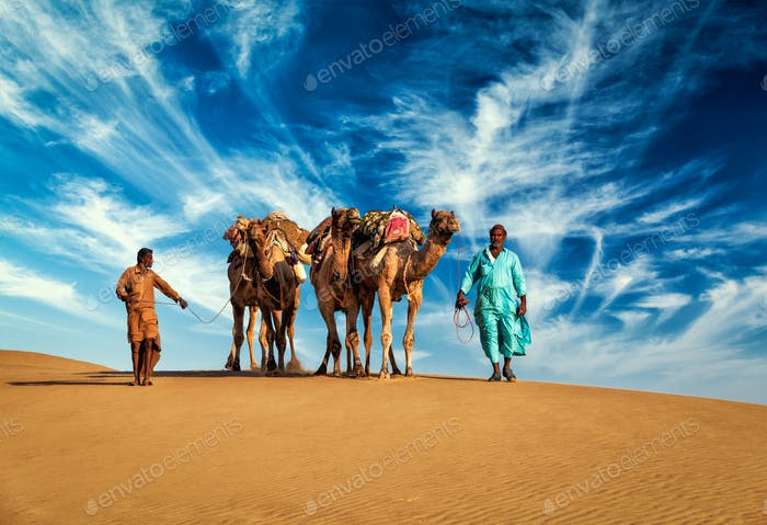 Two cameleers camel drivers with camels in dunes of Thar desert