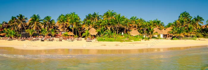 Idyllic tranquil view of summer beach landscape with palm trees, Mexico