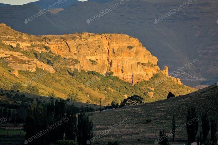 Golden sandstone cliffs