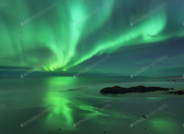 Aurora am Meer. Nordlichter in Lofoten