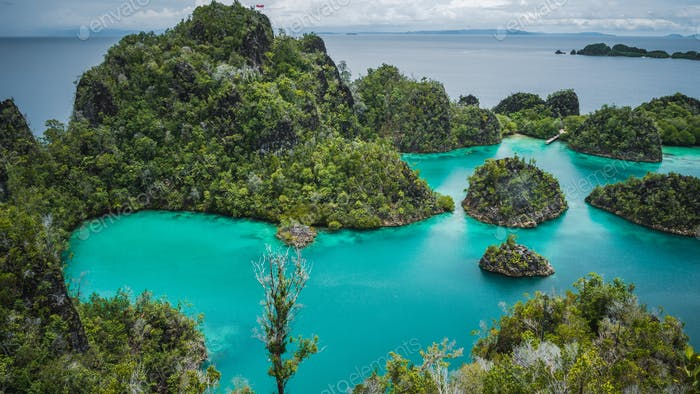 Blue bay with Pianemo island overgrown with jungle plants, surrounded by shallow blue ocean lagoon
