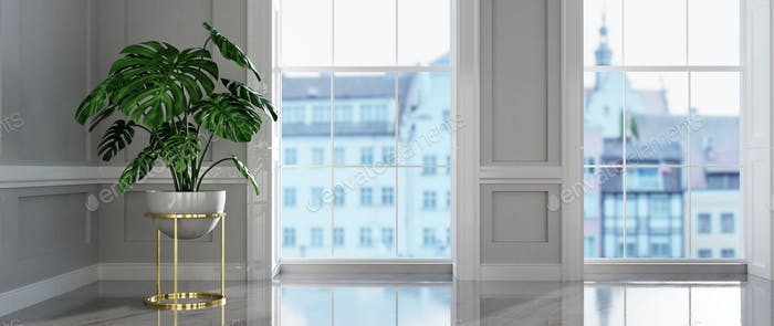 Classic empty interior apartment with monstera plant.