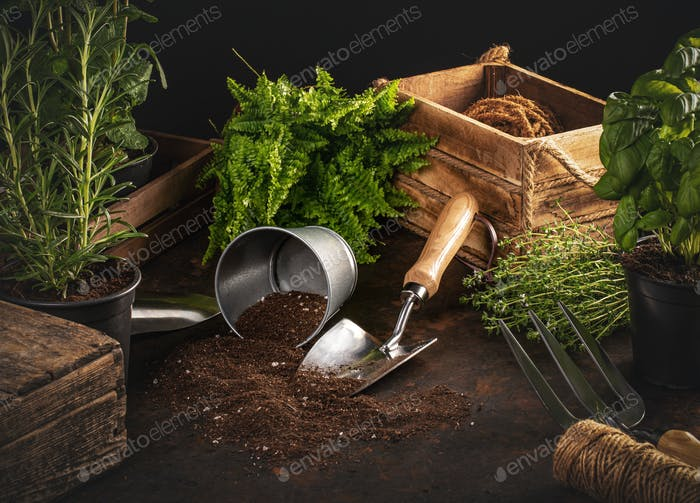 Gardening hobby concept