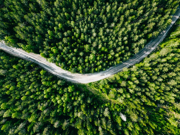 Aerial view of green forest road. Curved road from above.