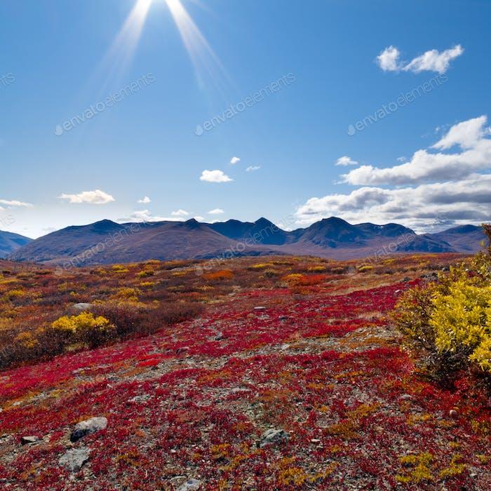 Alpine landscape in fall