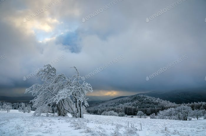 Typical snowy landscape in Ore Mountains, Czech republic.