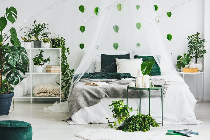 Urban jungle in white bedroom interior with green leafs on empty wall