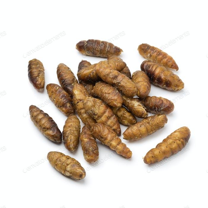 Heap of crispy silkworms