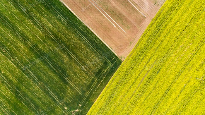 Colorful patterns in crop fields at farmland, aerial view, drone