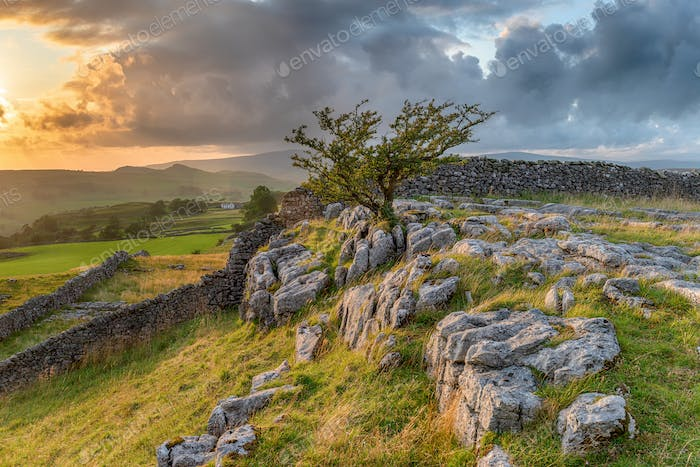 Stormy sunset over a small limestone pavement at the Winskill St