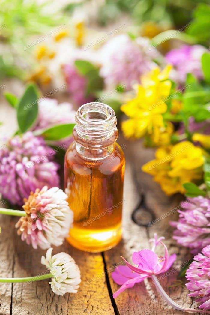ätherische Öle und medizinische Blumen Kräuter