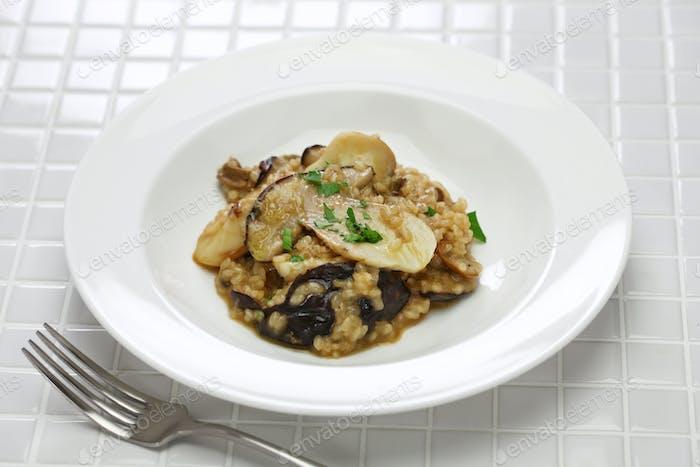 fresh porcini mushroom risotto