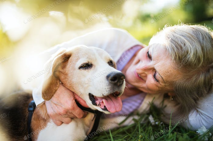 Senior woman with dog in spring nature, resting.