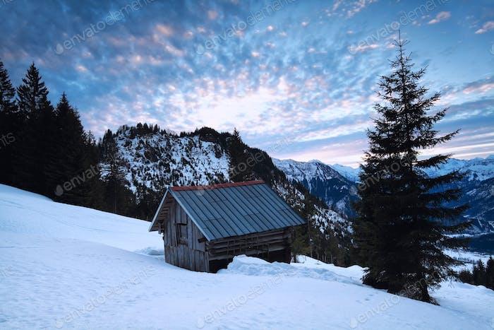 sunrise in snowy Alps