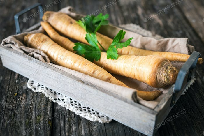 Fresh root parsley on rustic table photo by DanielVincek on Envato