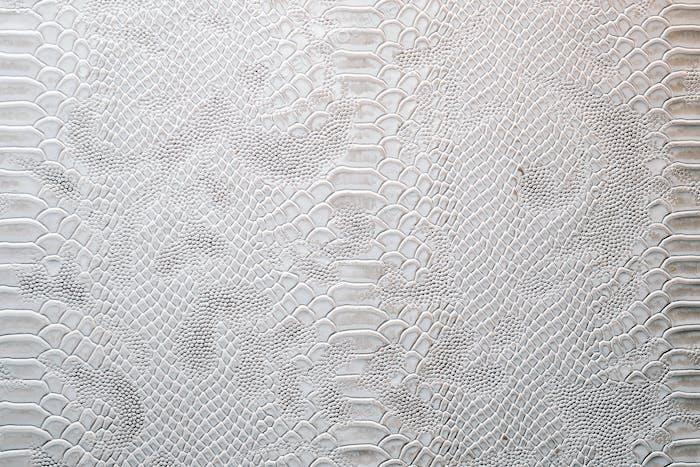 Leder mit krokodilgekleideter Textur. Drachenhaut-Hintergrund in silbernen Farben