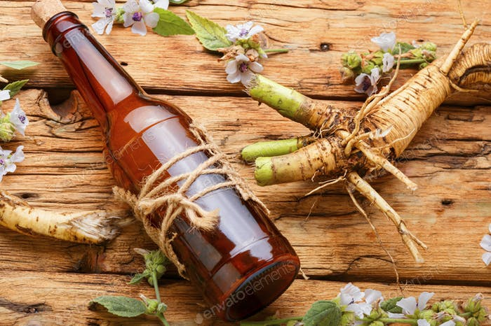 Althaea root in herbal medicine