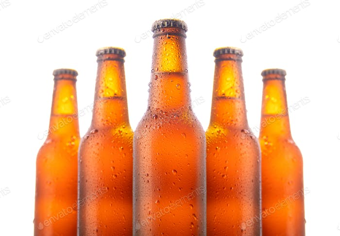 Set of five beer bottles isolated on white background