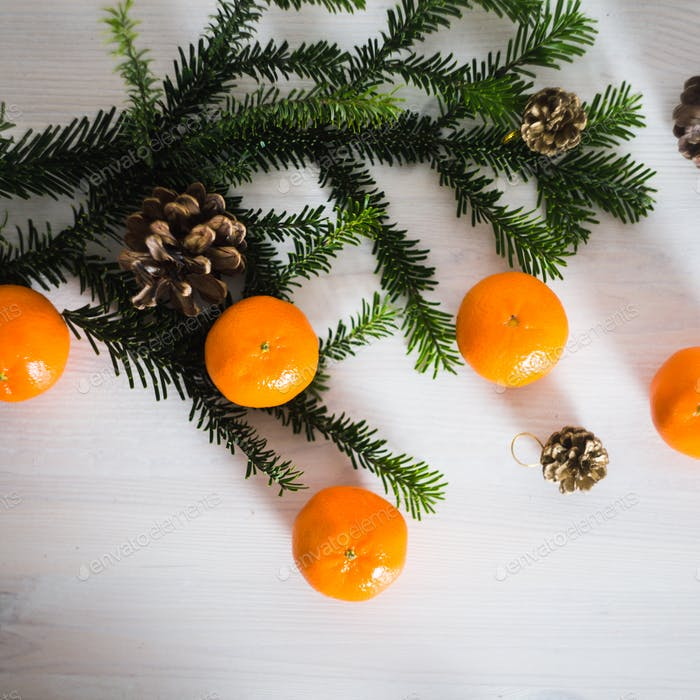 Fresh tangerines with fir branches and cones