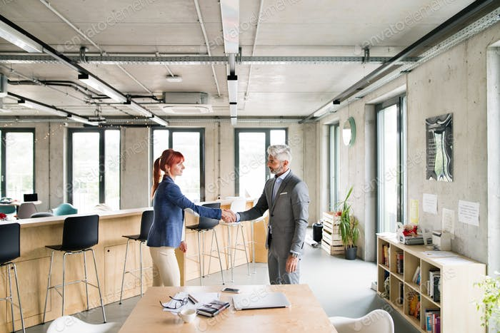 Two business people in the office shaking hands.