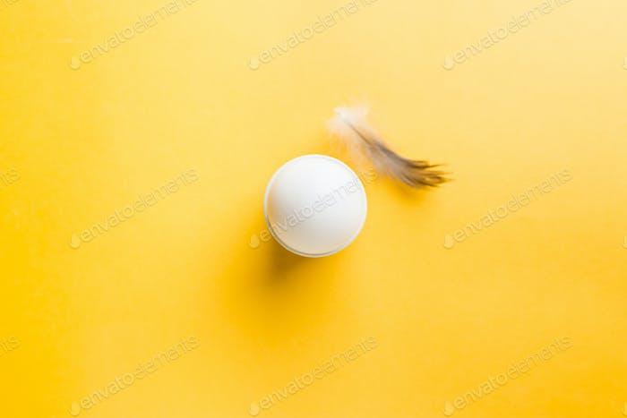 White egg on the yellow