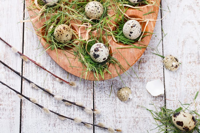 Quail egg .Easter holiday.