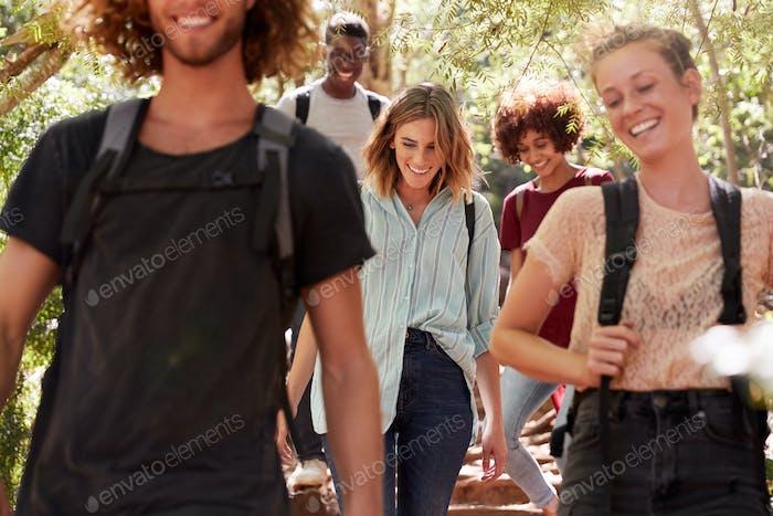 Millennial Freunde wandern zusammen bergab auf einem Waldweg, Nahaufnahme, Ernte