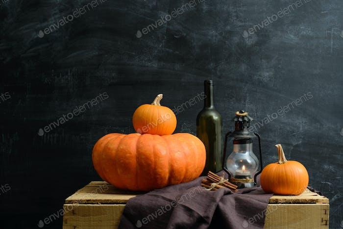 still life of pumpkins