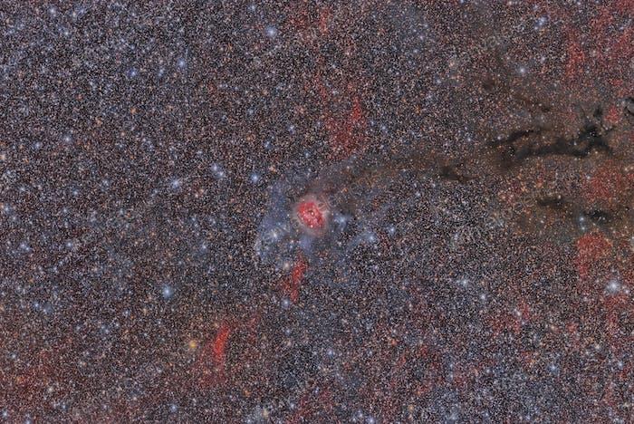 Sh2-125 Cocoon Nebula