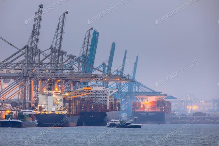 Rotterdam europoort commercial harbor landscape