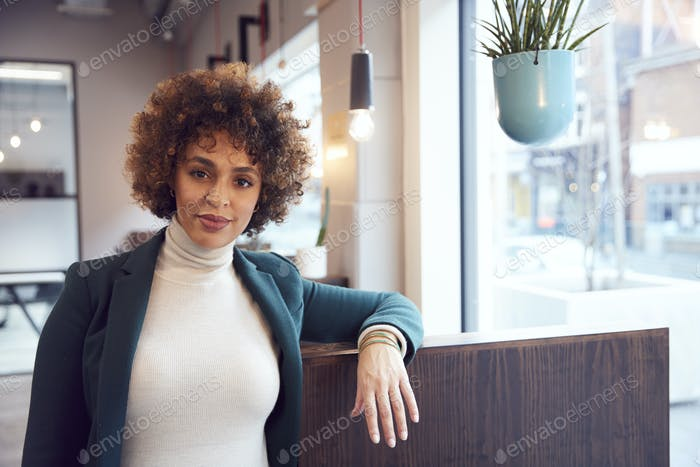Head And Shoulders Portrait Of Businesswoman  Working In Modern Office