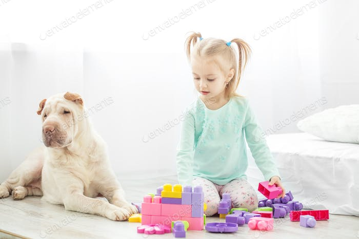 A preschool child is played with toys in a room with a dog. The