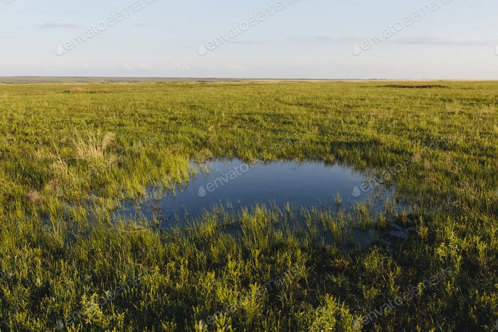 View across the wide open space of the Tallgrass Prairie Preserve in spring, grassland and a small
