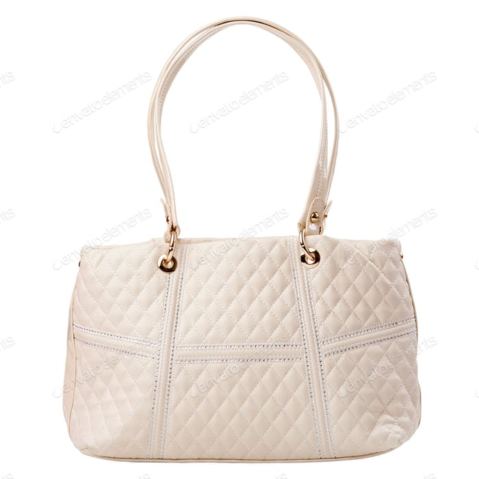 Luxury women purse isolated over white