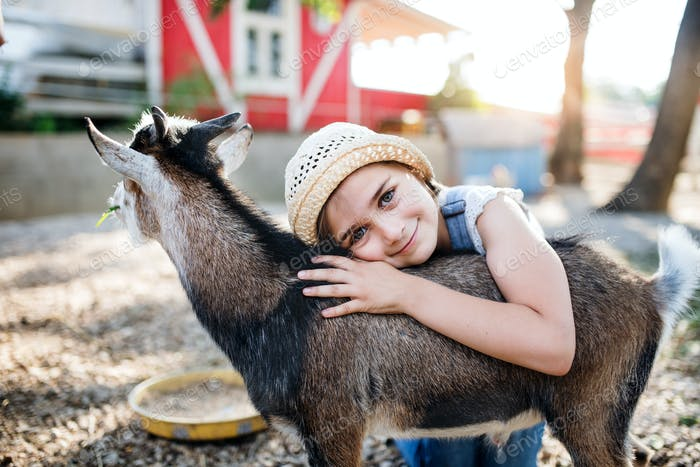 A portrait of small girl outdoors on family animal farm, hugging goat