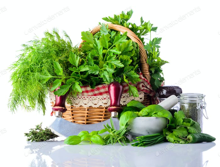 Green Cooking Herbs on White Backround
