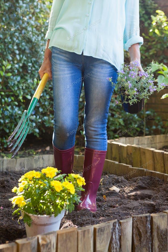 Niedriger Abschnitt der Senior Frau mit Gartengabel und Topfpflanze
