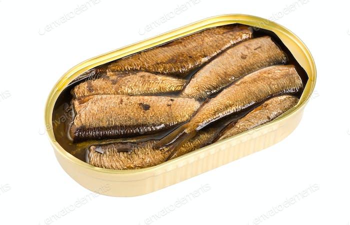 Sprotte Fisch in Dosen isoliert