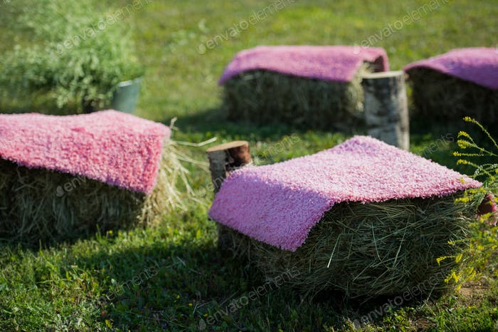 Seats made of straw hay and pallet wood covered with violet carpet