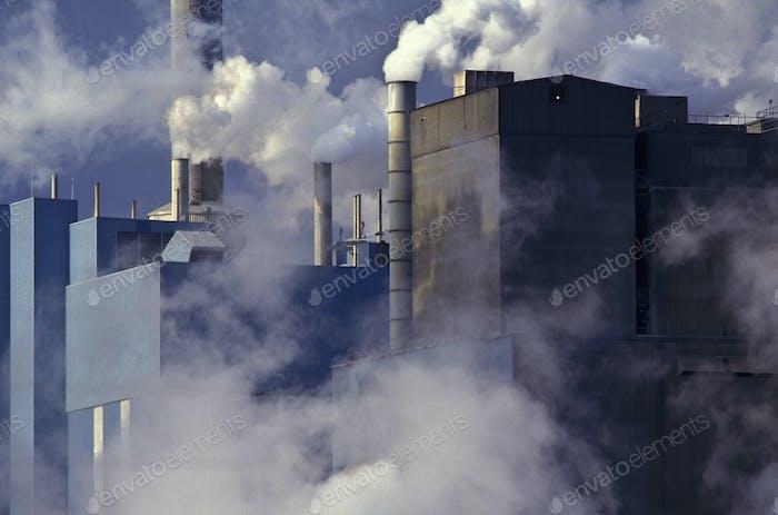 Paper Manufacturing Plant Near Charleston, South Carolina