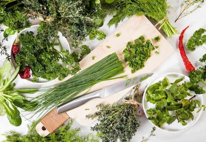 Veriety of fresh organic herbs