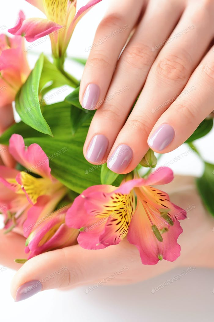 Hands of a woman with pink manicure on nails and flowers alstroe