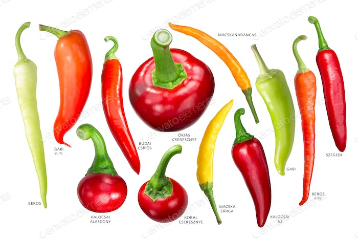 Hungarian paprika peppers, paths