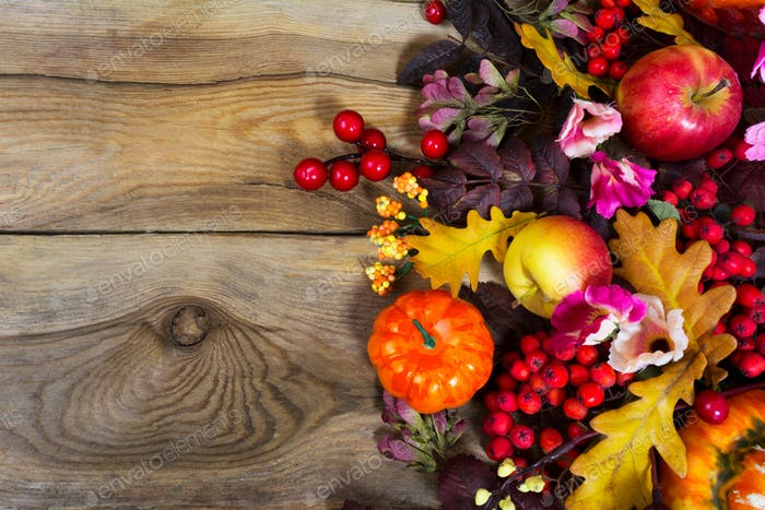 Fall decoration with yellow oak leaves, red berries, pink flower