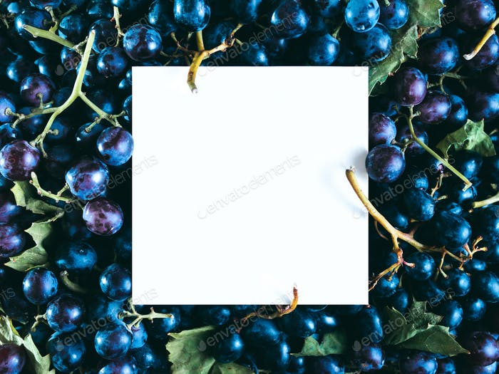 grape texture with white paper card