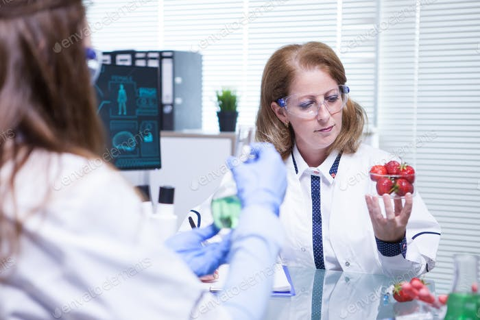 Caucasian female scientist looking at strawberries in her research lab