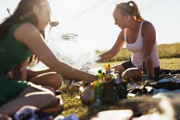 Friends barbecuing during picnic