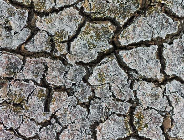 The arid climate and dry mud