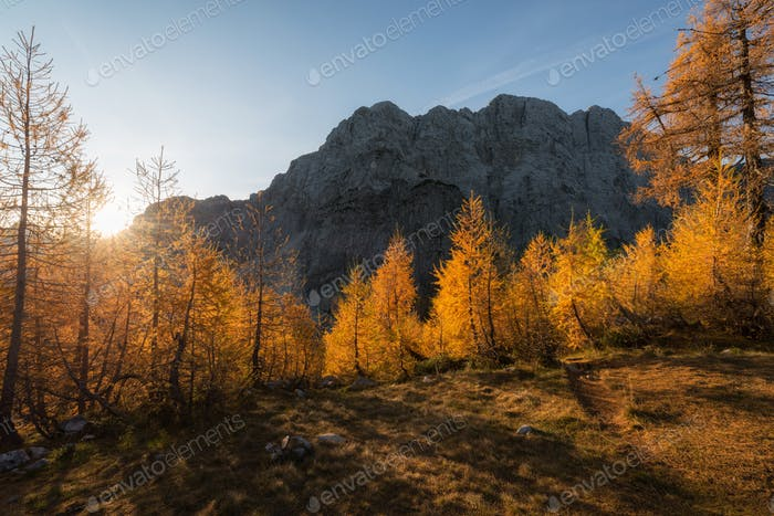 Autumn in the mountains of the Alps