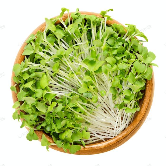 Mizuna sprouts in wooden bowl